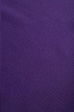 Rental store for Solid Polyester - Purple in Charleston SC